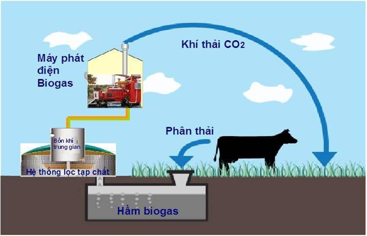 tai-sao-phai-dung-biogas