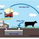 Biogas công nghệ thân thiệt với môi trường